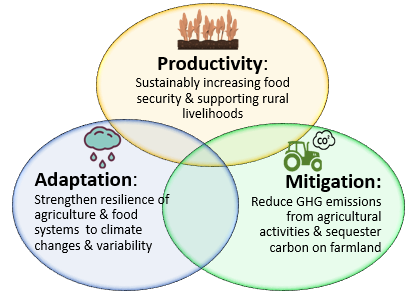 Diagram of climate smart agriculture focal areas